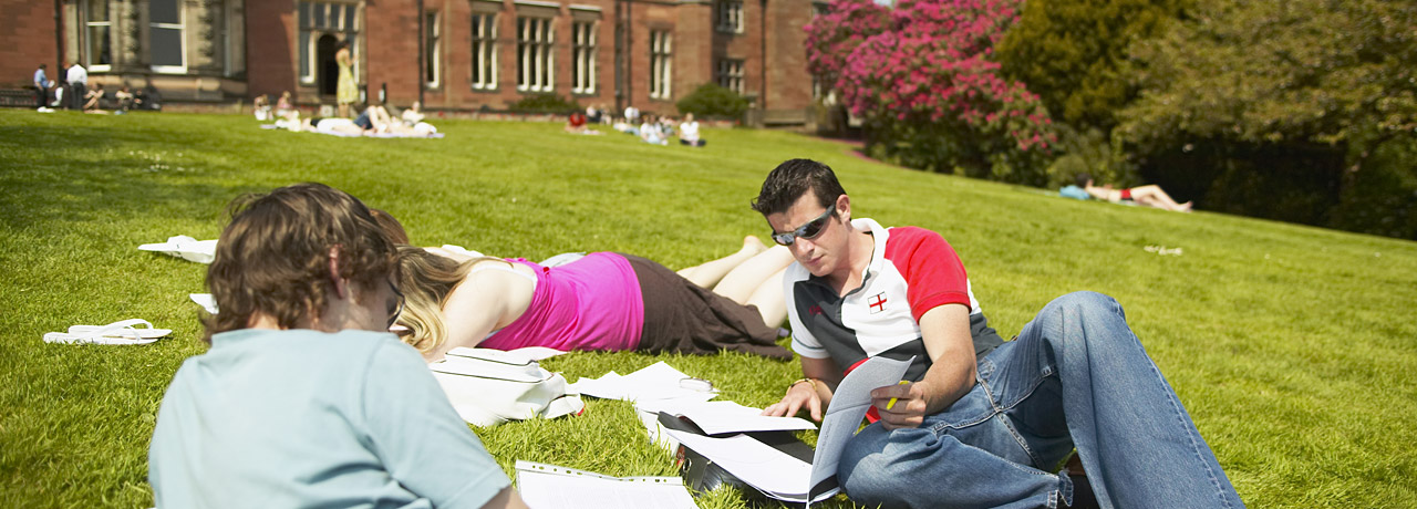Students study in the grounds
